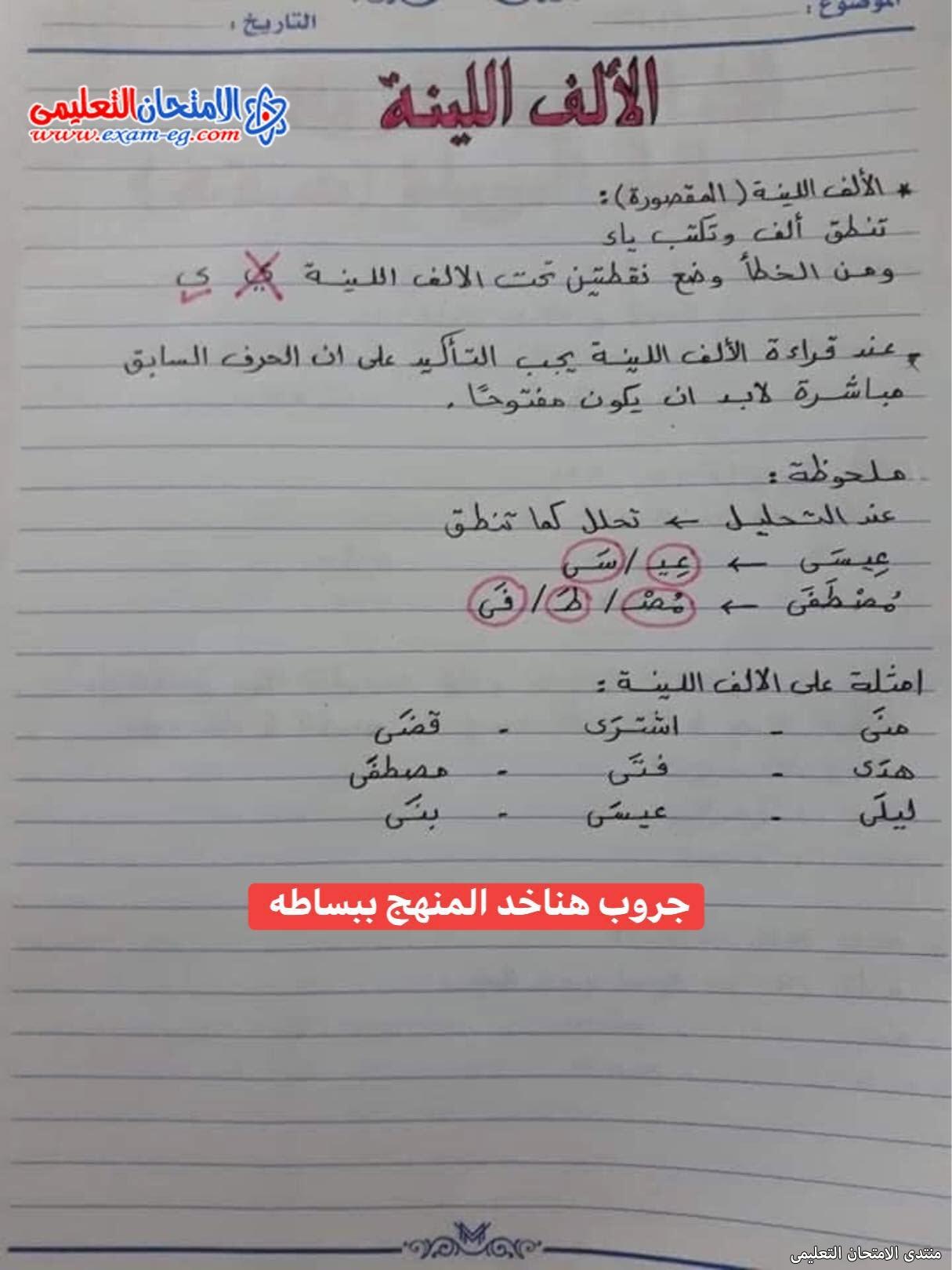exam-eg.com_163026431141573.jpg