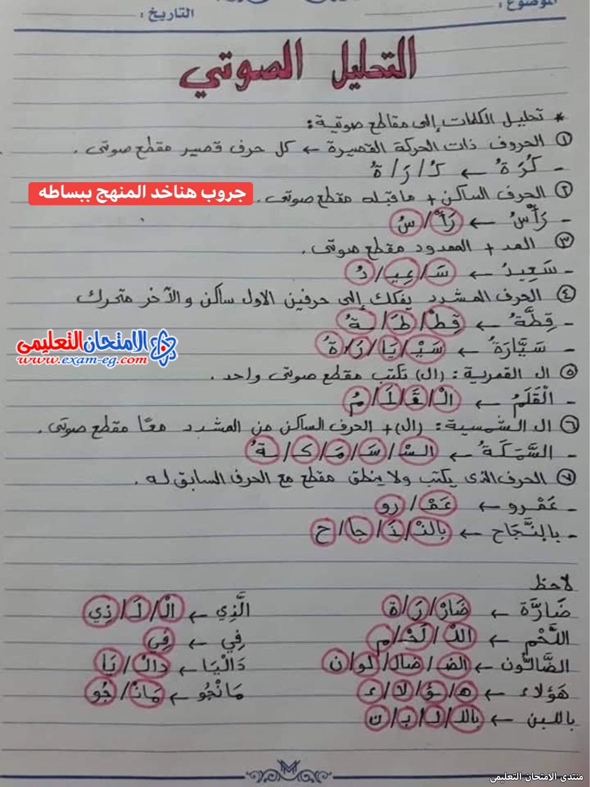 exam-eg.com_163026431154635.jpg