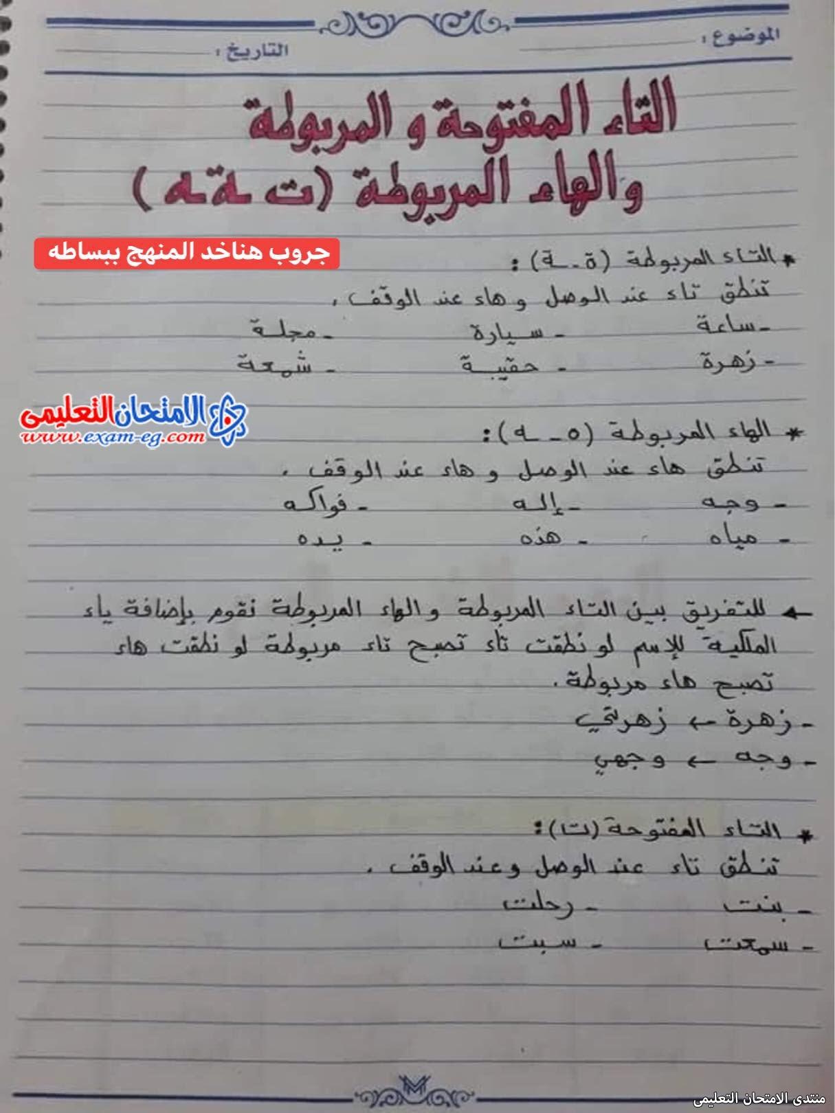 exam-eg.com_16302643116156.jpg