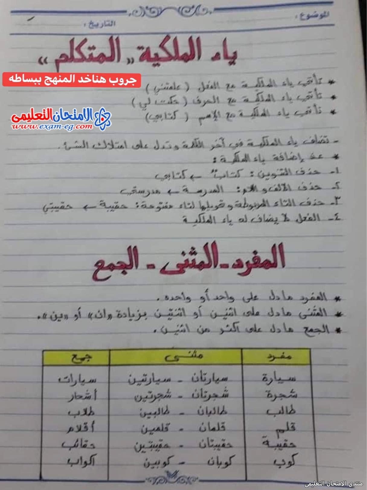 exam-eg.com_163026431168047.jpg