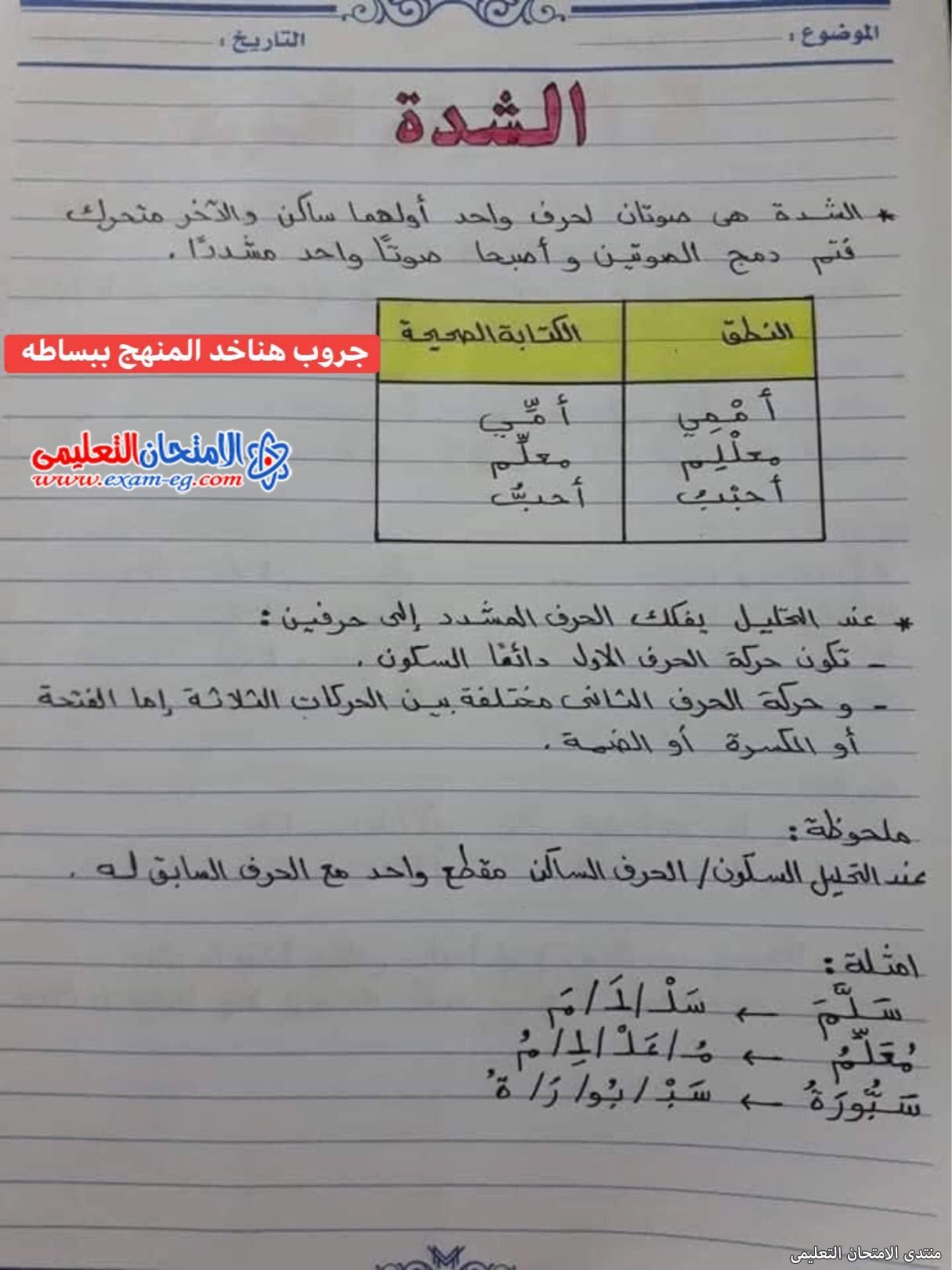 exam-eg.com_16302643118710.jpg