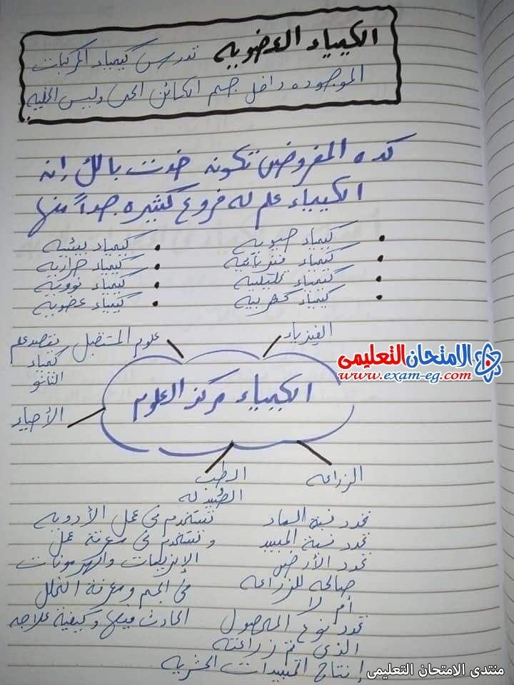 exam-eg.com_163097747686674.jpg