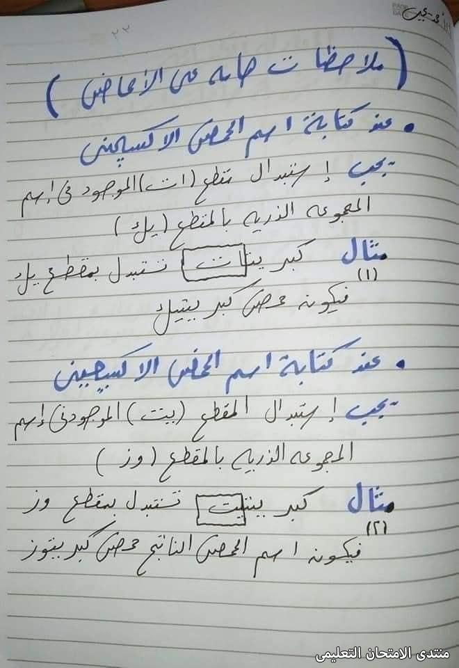 exam-eg.com_163097747709713.jpg