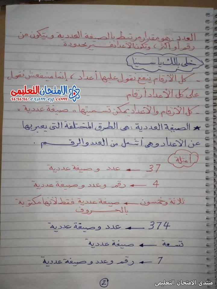 exam-eg.com_163150915799772.jpg