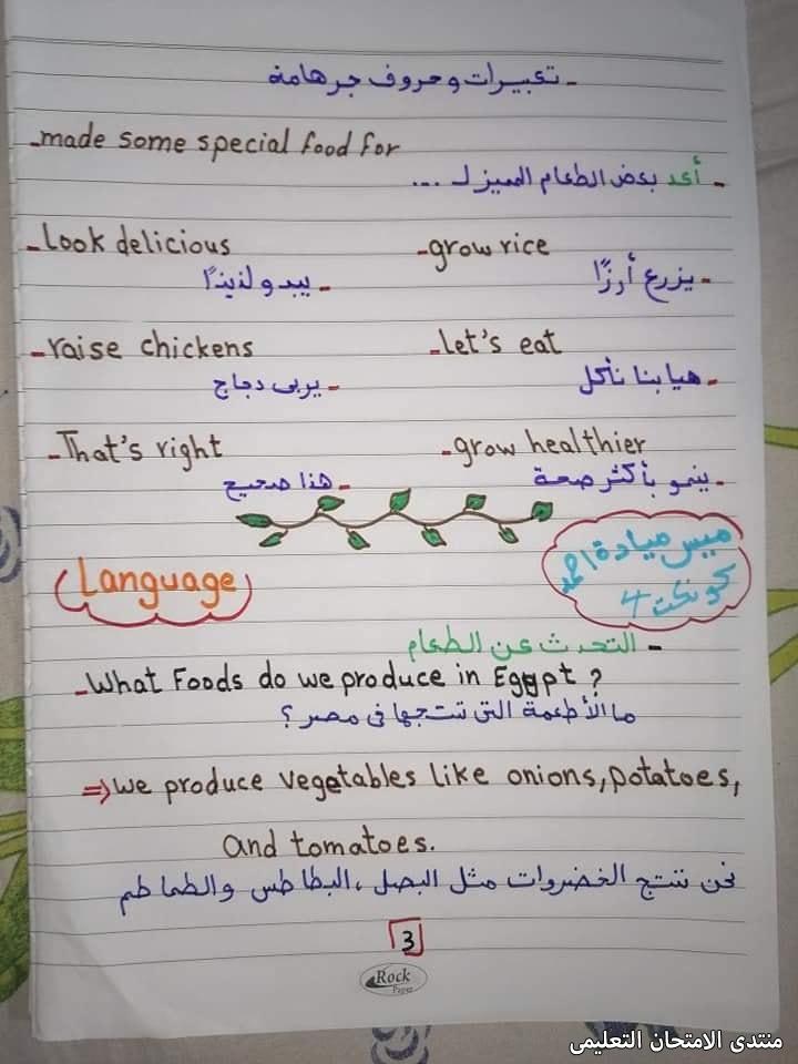 exam-eg.com_163240952313333.jpg