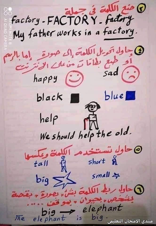 exam-eg.com_163241078705773.jpg
