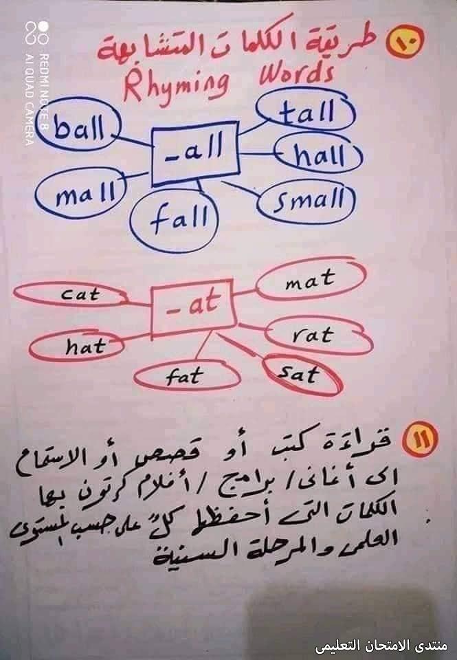 exam-eg.com_163241078711985.jpg