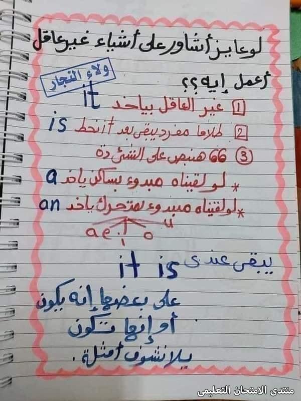 exam-eg.com_163241140995055.jpg