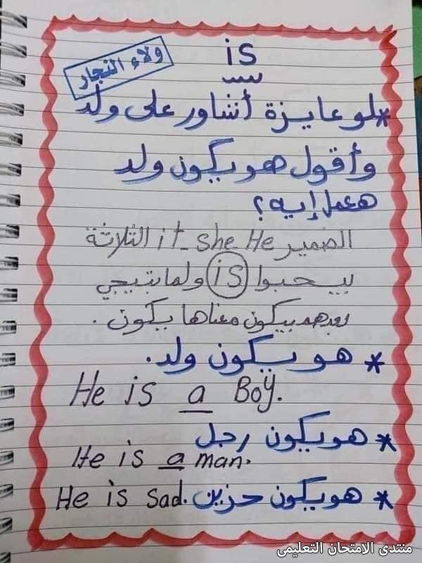 exam-eg.com_1632411410073210.jpg