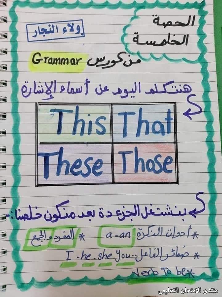 exam-eg.com_1632411410145513.jpg