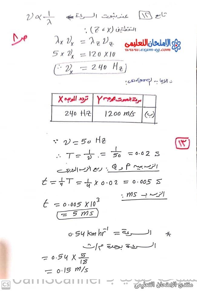 exam-eg.com_163343406138548.jpg