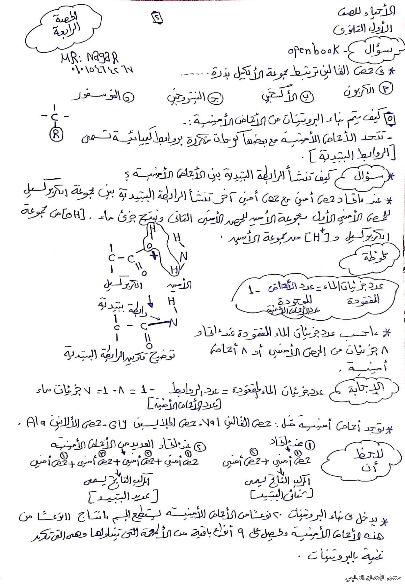 exam-eg.com_16334355396392.jpg