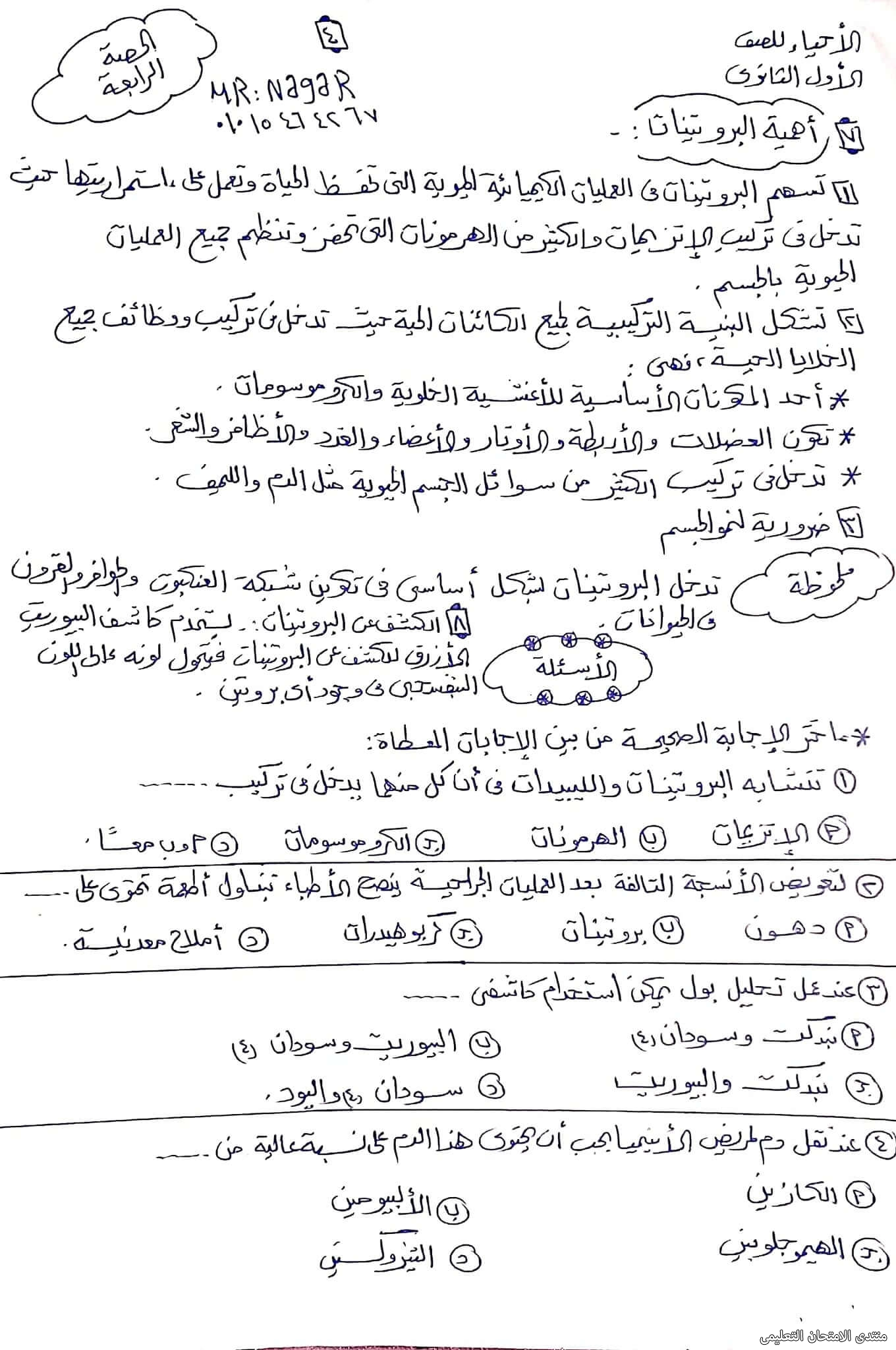 exam-eg.com_163343553987254.jpg