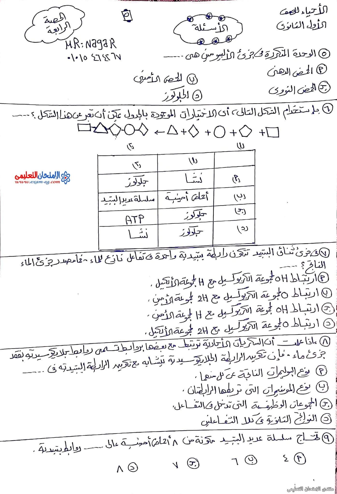 exam-eg.com_163343553998275.jpg