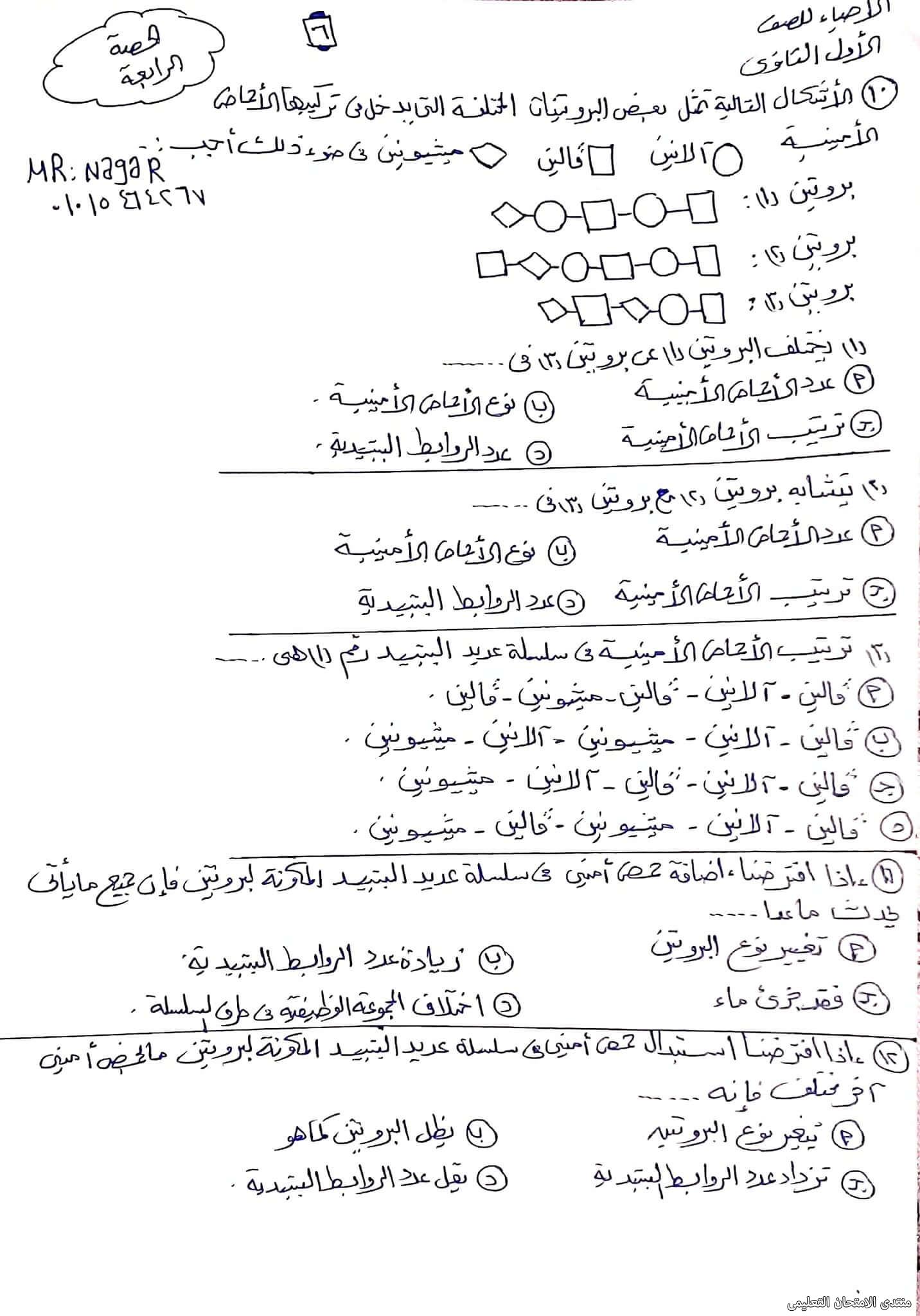 exam-eg.com_163343554009966.jpg