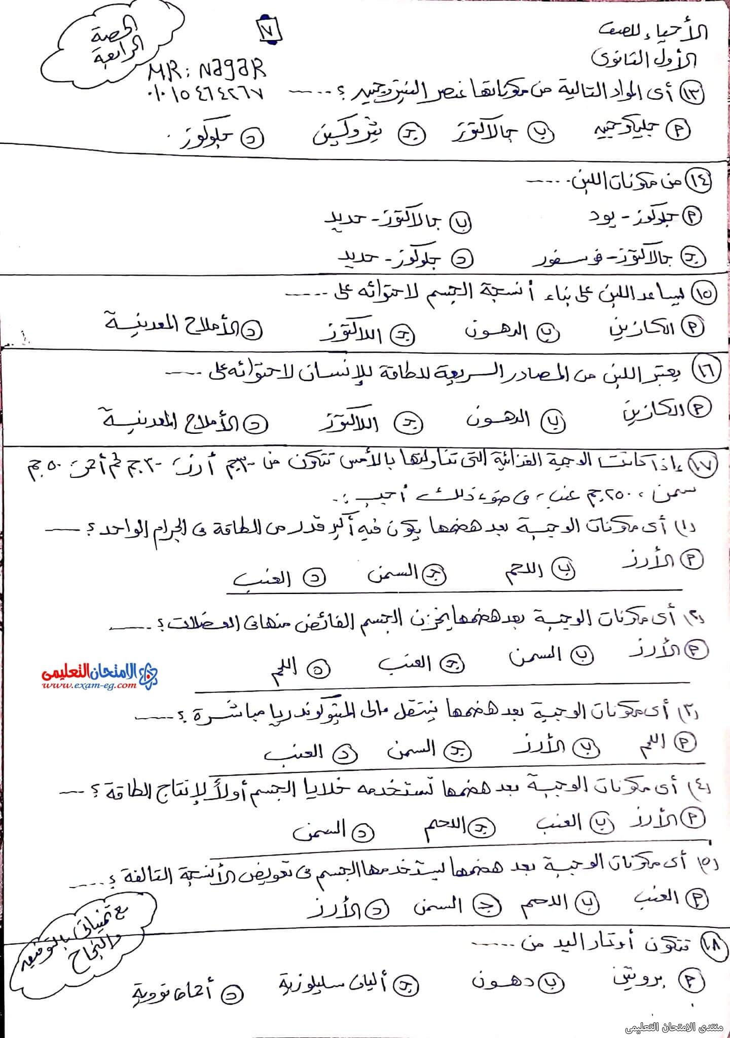 exam-eg.com_163343554021567.jpg
